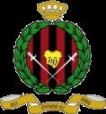 dpmm fc logo